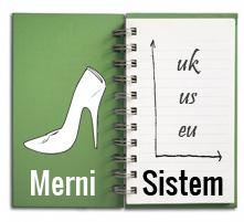 Merni sistem
